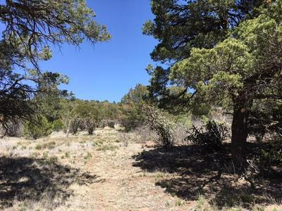 0 COUNTY LINE ROAD, Edgewood, NM 87015 - Photo 1
