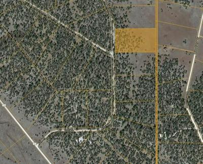 LOT 13 FOX - TIMBERLAKE ROAD, Ramah, NM 87321 - Photo 2