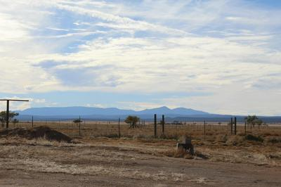 110 FIRE FLY, McIntosh, NM 87032 - Photo 2