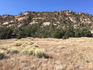 LOT 3 BOX S RANCH ROAD, Ramah, NM 87321 - Photo 1