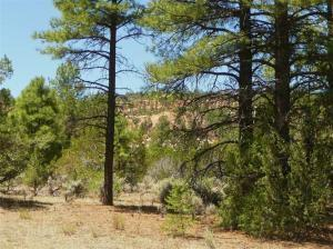 LOT 4 YUCCA, Ramah, NM 87321 - Photo 1