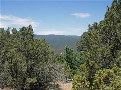 LOTS 4 & 5 EL GALLO ROAD, Cedar Crest, NM 87008 - Photo 1