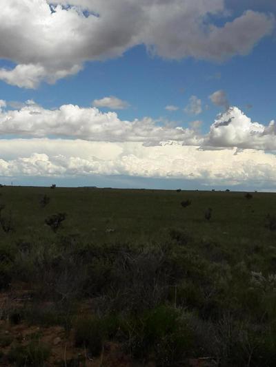 33 CAMINO SOL Y PAZ, STANLEY, NM 87056 - Photo 2