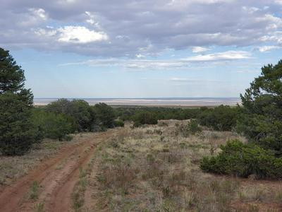 1229 STATE ROAD 344 # B, Stanley, NM 87056 - Photo 1