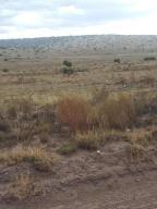 31 PINON SPRINGS RD, Magdalena, NM 87825 - Photo 1