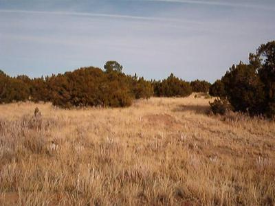 7 CEDAR TREE LN, Edgewood, NM 87015 - Photo 1