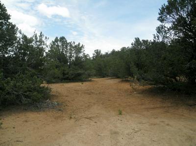 7 VISTA DEL CIELO, Cedar Crest, NM 87008 - Photo 2