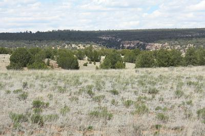 LOT 90 PINE MEADOWS UNIT 3, Ramah, NM 87321 - Photo 2