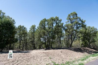 12 LOS PECOS TRL, Tijeras, NM 87059 - Photo 2