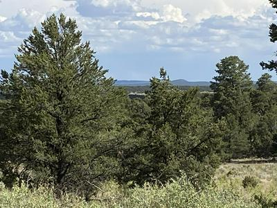 LOTS10-11 HIGH HORSE LOOP ROAD, Ramah, NM 87321 - Photo 1