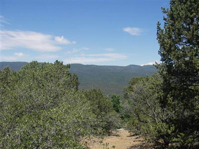 LOTS 4 & 5 EL GALLO ROAD, Cedar Crest, NM 87008 - Photo 2
