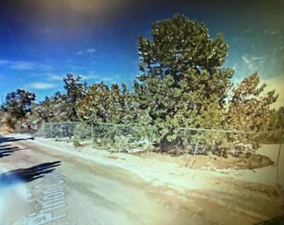 PINON COVE, Cedar Crest, NM 87008 - Photo 2