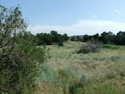 WILDLIFE TRAIL, Edgewood, NM 87015 - Photo 2