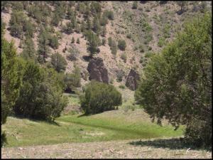 29 HIGHWAY 12, Aragon, NM 87820 - Photo 2