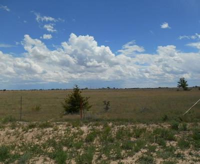 0 ALBERT RD, MCINTOSH, NM 87032 - Photo 2