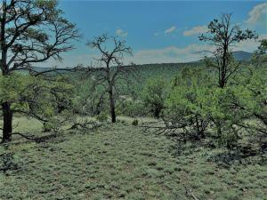 2 CARSON DR, Datil, NM 87821 - Photo 2
