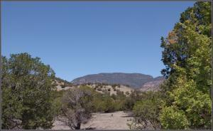4 RUTTER RANCH RD, Datil, NM 87821 - Photo 2