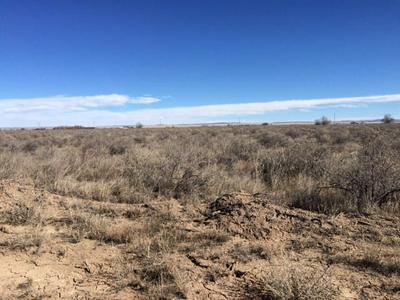 0 SPRING GROVE, McIntosh, NM 87032 - Photo 1