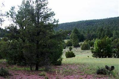 LOT 14 SAGEBRUSH, Ramah, NM 87321 - Photo 1