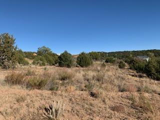 RORY LANE, Edgewood, NM 87015 - Photo 2