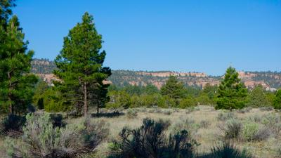 9 TIMBER LAKE RD, Ramah, NM 87321 - Photo 1