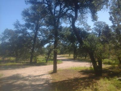 LOT 179 RANCH DR - PINE MEADOWS UNIT 3, Ramah, NM 87321 - Photo 1