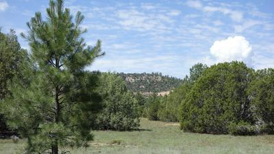 10 TIMBER LAKE RD, Ramah, NM 87321 - Photo 1