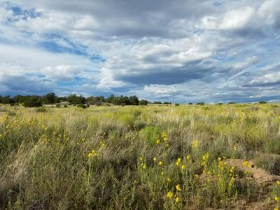 LOT 108 INDIAN SPRINGS, Quemado, NM 87829 - Photo 1