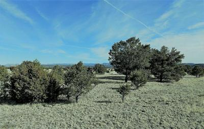 MEADOW ROAD, DATIL, NM 87821 - Photo 2