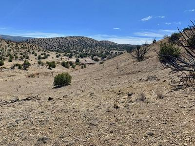 59 FOREST ROAD 123, Magdalena, NM 87825 - Photo 2