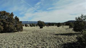 MEADOW ROAD, Datil, NM 87821 - Photo 1
