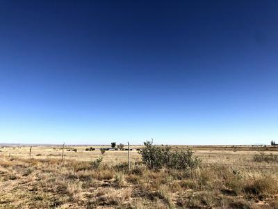 SALINE PUMP, Moriarty, NM 87035 - Photo 2