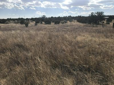 58 INDIAN HILLS RD, Moriarty, NM 87035 - Photo 1