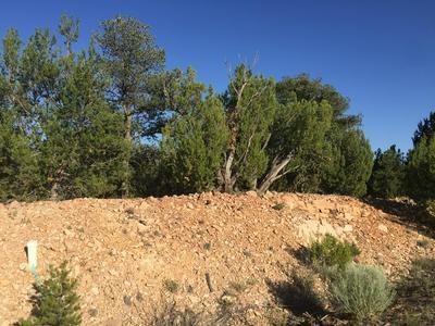 9 KIVA CT, Sandia Park, NM 87047 - Photo 2