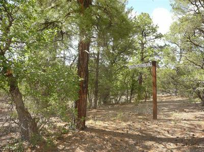 LOT 21 ROADRUNNER, Ramah, NM 87321 - Photo 2