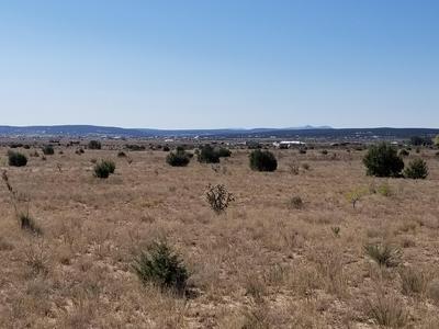 224 ENTRANOSA RD, Edgewood, NM 87015 - Photo 2