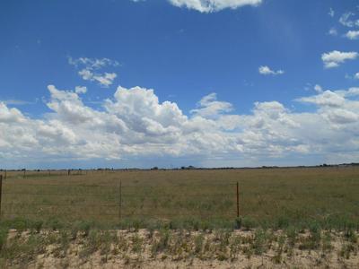 0 ALBERT RD, McIntosh, NM 87032 - Photo 1