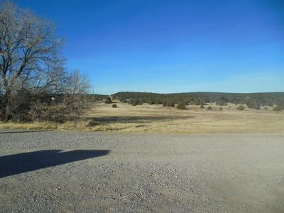 4 CANYON HILLS RD, Edgewood, NM 87015 - Photo 2