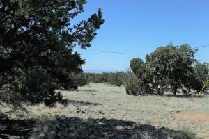 50 RAVEN LOOP, Datil, NM 87821 - Photo 1