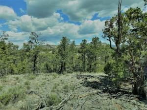 2 CARSON DR, Datil, NM 87821 - Photo 1