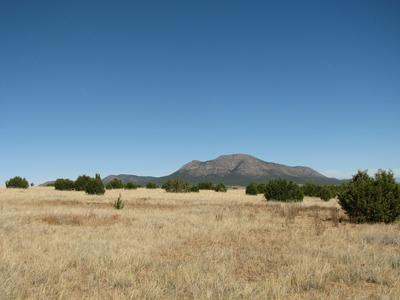 17 TROYA CT, Tijeras, NM 87059 - Photo 1
