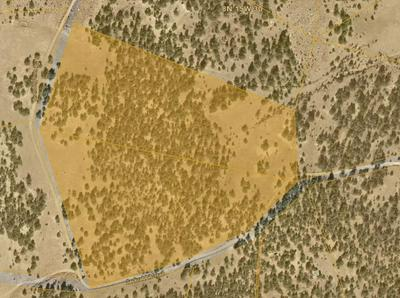 LOTS 15-16 BRANDING IRON, Ramah, NM 87321 - Photo 2