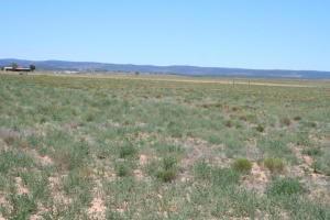 LOT 1B 2A HOWELL ROAD, McIntosh, NM 87032 - Photo 2