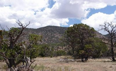 114 COYOTE TRL, Datil, NM 87821 - Photo 2