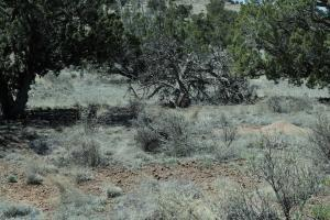 6 FAWN CIR, Datil, NM 87821 - Photo 2