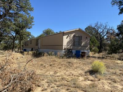 63 RANCH DR - PINE MEADOWS UNIT 3, Ramah, NM 87321 - Photo 1