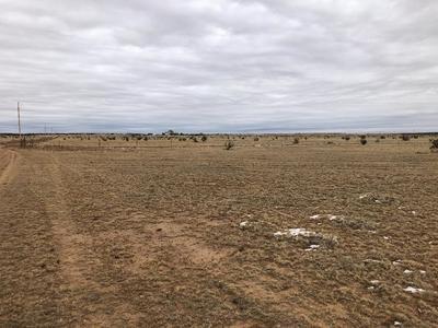 50 BIG DRAW RD, STANLEY, NM 87056 - Photo 1