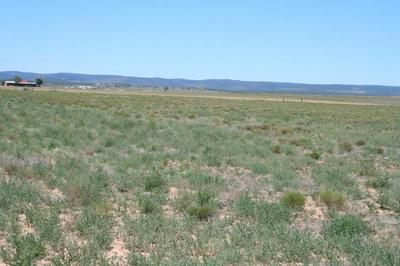 LOT 1B 2A HOWELL ROAD, MCINTOSH, NM 87032 - Photo 2