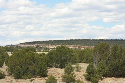 LOT 90 PINE MEADOWS UNIT 3, Ramah, NM 87321 - Photo 1