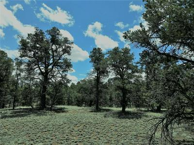 LOT 95 RANCH ROAD, DATIL, NM 87821 - Photo 2